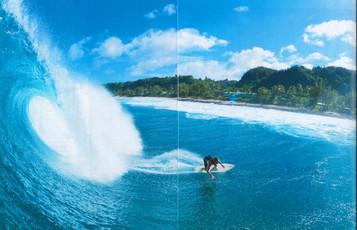 Ee_surfer_3