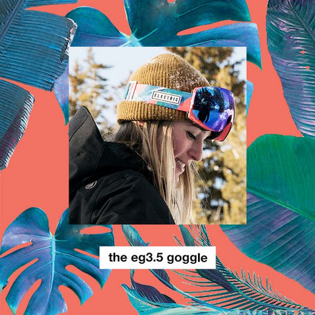 Eg3_5pinkpalmsemail